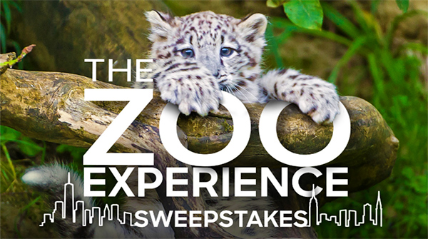www.animalplanet.com/zoo sweepstakes
